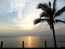 Sonnenuntergang und Kokosnuss Lizenzfreie Stockbilder
