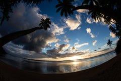 Sonnenuntergang und Kokosnuss-Palmen auf Strand lizenzfreie stockbilder