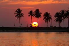 Sonnenuntergang und Oberlicht mit Kokosnussbaum auf dem Strand Stockfotos