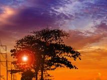 Sonnenuntergang und Schattenbaum im Abendbewölkten himmel Lizenzfreie Stockfotos