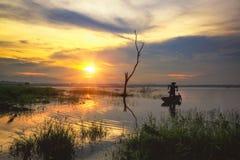 Sonnenuntergang und toter Baum im See Lizenzfreies Stockbild