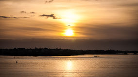 Sonnenuntergang und Vogel lizenzfreie stockfotos
