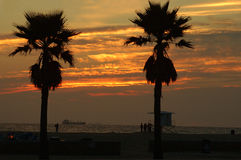 Sonnenuntergang-Verschiffen-Gold Stockbilder