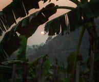 Sonnenuntergang von der Spitze Stockbilder