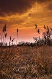 Sonnenuntergang vor Sturm Stockbild