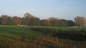 Sonnenuntergang während einer Oktober-Wanderung nahe Ootmarsum (die Niederlande) Stockfoto