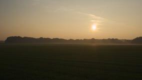 Sonnenuntergang während einer Oktober-Wanderung nahe Ootmarsum (die Niederlande) Stockfotografie