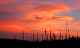 Sonnenuntergang in Yellowstone Stockfotografie