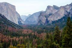 Sonnenuntergang in Yosemite Stockbilder