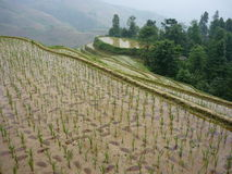 Sonnenuntergang Yunnans China Stockbild