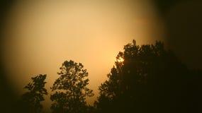 Sonnenuntergangansicht lizenzfreie stockfotos