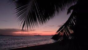 Sonnenuntergangansicht bewegt Bruch auf tropischem Strand der Insel wellenartig Meereswellen auf der Trauminsel Seychellen stock video