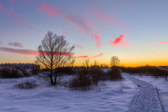 Sonnenuntergangbild im hohen Vens, Belgien Lizenzfreies Stockfoto