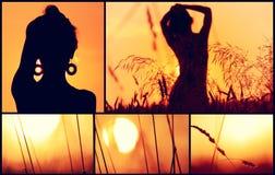Sonnenuntergangcollage. Stockbilder