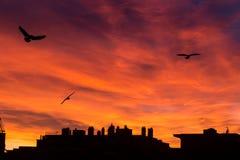 Sonnenuntergangdämmerungsansicht der Stadtskyline von meinem Balkon Stockbild