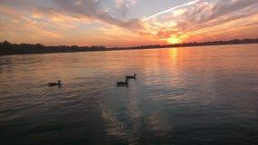 Sonnenuntergangenten lizenzfreie stockbilder