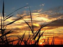 Sonnenuntergangfarben Lizenzfreie Stockbilder