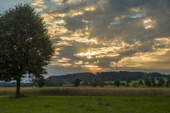 Sonnenuntergangfeld, Baum und Weizenballen im Bayern Lizenzfreie Stockfotografie