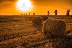 Sonnenuntergangfeld mit Heuballen stockfotografie