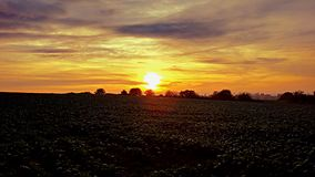 Sonnenuntergangfelder Stockfotografie