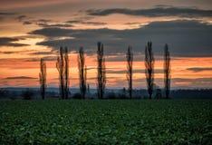 Sonnenuntergangfeldschönheits-Natursonnenuntergang drei gestalten Himmelwolken landschaftlich Stockfotografie