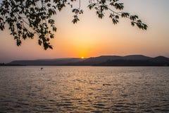 Sonnenunterganggebirgsvogel lizenzfreie stockbilder
