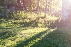 Sonnenunterganggraslandschaft Lizenzfreie Stockfotos