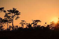 Sonnenunterganghimmelhintergründe, Landschaft stockfotos