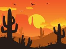 Sonnenuntergangkaktuswüste Stockbild