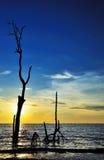 Sonnenunterganglandschaft Stockbilder