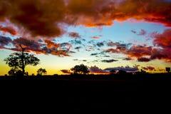 Sonnenunterganglandschaft im Sambia stockfotografie