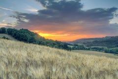 Sonnenunterganglandschaft von toskanischen grünen Hügeln stockfoto