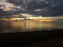 Sonnenuntergangleben Stockfoto