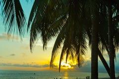 Sonnenuntergangpalm- beachküstenliniensommer Stockfoto