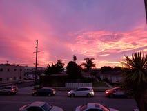 Sonnenuntergangrosa Marina Del Rey stockbild