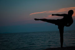 Sonnenuntergangschattenbild von übenden Kampfkünsten des Mannes Lizenzfreie Stockfotos