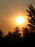Sonnenuntergangsonne mit gelbem Himmel Stockfotografie