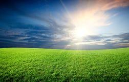 Sonnenuntergangsonne und Feld des Grases Lizenzfreie Stockfotografie
