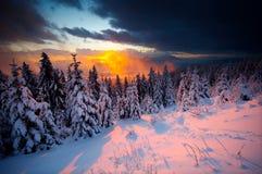 Sonnenuntergangstrahlen Stockfoto