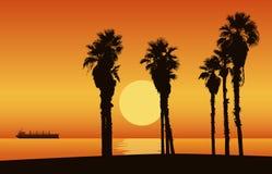 Sonnenuntergangstrand mit Schattenbild von Palmen Auch im corel abgehobenen Betrag stock abbildung