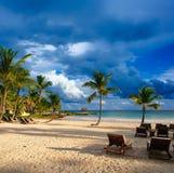 Sonnenuntergangtraumstrand mit Palme über dem Sand. Tropisches Paradies. Dominikanische Republik, Seychellen, Karibische Meere, Ma Lizenzfreie Stockbilder