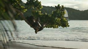 Sonnenuntergangzeit an Strand Anse Lazio, Praslin, Seychellen stock video