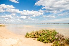 Sonnige Ansicht des lokalen Strandes in Fuseta, Ria Formosa Natural-Park, Portugal Lizenzfreie Stockfotografie