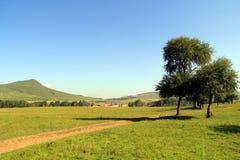 Sonnige Hügel, Wälder und Wiesen Lizenzfreie Stockbilder