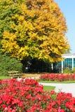 Sonnige Herbstszene stockbild