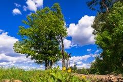 Sonnige Landschaft der Landschaft am Anfang des Sommers Lizenzfreie Stockfotos