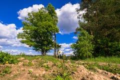 Sonnige Landschaft der Landschaft am Anfang des Sommers Lizenzfreies Stockbild