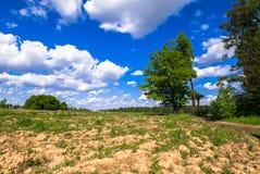 Sonnige Landschaft der Landschaft am Anfang des Sommers Lizenzfreie Stockbilder