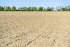 Sonnige landwirtschaftliche Landschaft Lizenzfreies Stockbild