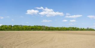 Sonnige landwirtschaftliche Landschaft Stockbilder
